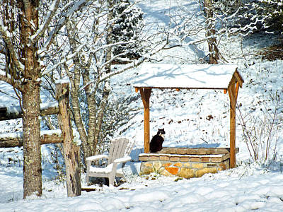 Photograph - Wishing Well In The Snow With Kitty Cat 3 by Duane McCullough
