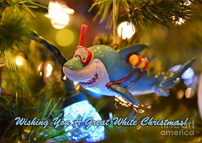 Photograph - Wishing You A Great White Christmas by Olga Hamilton