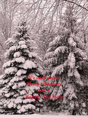 Photograph - Wishing You A Merry Christmas by David Bearden