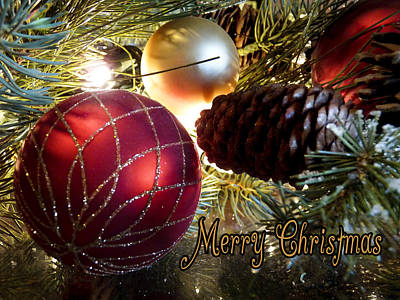 Photograph - Wishing You A Merry Christmas by Lucinda Walter