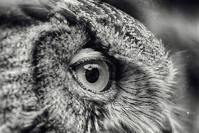 Photograph - Vision Of Wisdom - Wet Plate Process by Nicholas Evans