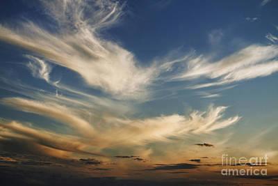 Photograph - Wisp by Andrew Paranavitana