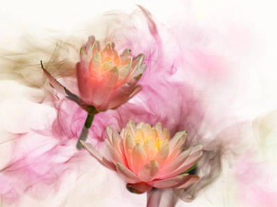 Photograph - Wispy Lilies by Grace Dillon