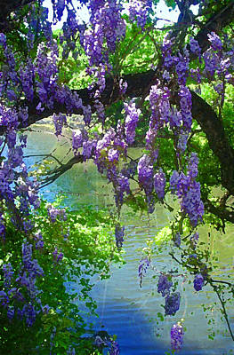 Wisteria Over Turtle Creek Art Print by Robert J Sadler