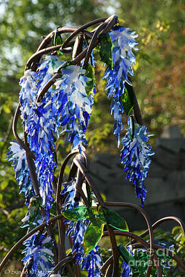 Photograph - Wisteria Sculpture by Susan Herber