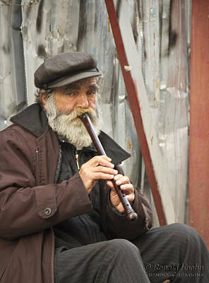 Photograph - Wistful Flute by Ronald Hoehn