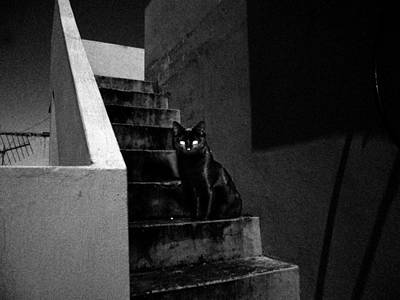 Creepy Mixed Media - Witch's Cat In Moonlight... by Salman Ravish