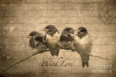 Photograph - With Love by Liz  Alderdice