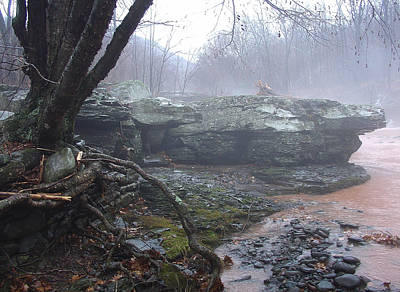Photograph - With The Kaaterskill Running Red A Seasonal Fog Drifts In From The Clove In Palenville by Terrance DePietro