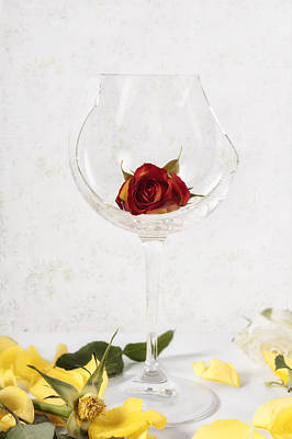 Table Wine Photograph - Withered Red Rose by Joana Kruse
