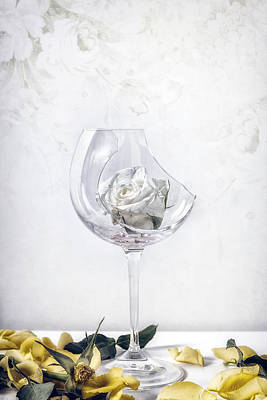 Table Wine Photograph - Withered White Rose by Joana Kruse