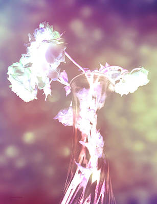 Photograph - Withering Away - Magenta Sparkle by Shawna Rowe