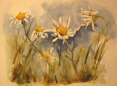 Withering Daisy's Art Print by Ramona Kraemer-Dobson