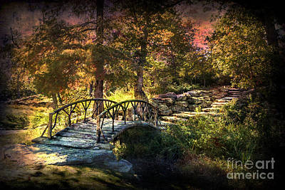 Woddard Park Bridge II Art Print by Tamyra Ayles