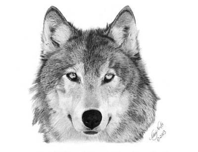 Wolf - 004 Art Print