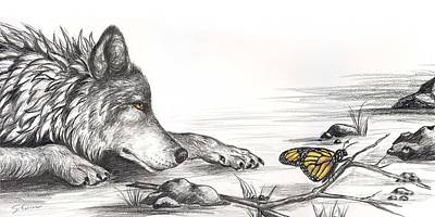 Dog Close-up Drawing - Wolf And Butterfly by Sharon Molinaro