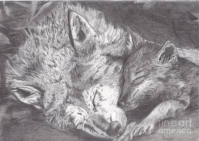 Wildlife Drawing - Wolf And Pup Napping by Celia Fedak