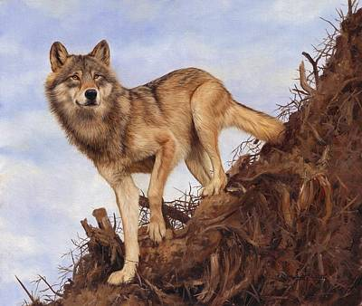 Painting - Wolf And Tree Root by David Stribbling