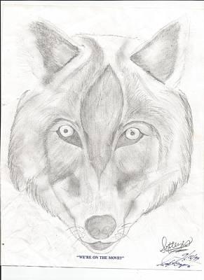 Drawing - Wolf by Annette Abbott