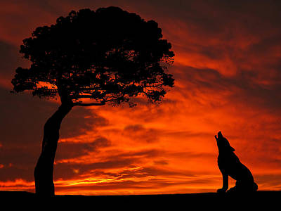 Wolf Calling For Mate Sunset Silhouette Series Art Print by David Dehner