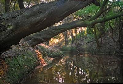 Photograph - Wolf Creek. by Chris  Kusik