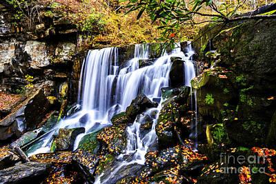 Wolf Creek Photograph - Wolf Creek Falls by Thomas R Fletcher