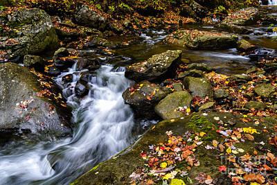 Wolf Creek Photograph - Wolf Creek New River Gorge by Thomas R Fletcher