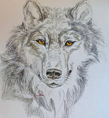 Wolf Eyes  Art Print by Gracia  Molloy