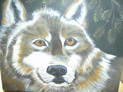 Wolf Gaze Art Print