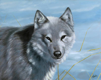 Dry Lake Painting - Wolf In The Snow by John Silver