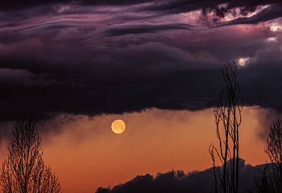 Photograph - Wolf Moon by Roger Chenery