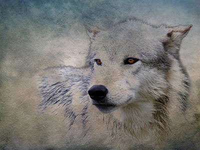 Photograph - Wolf Paint by Steve McKinzie