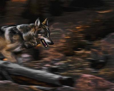 Canines Digital Art - Wolf Run Digital Art by Ernie Echols