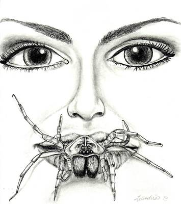 Spider Woman Drawing - Wolf Spider Drawing  by Leandria Goodman