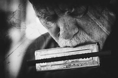 Feelings Photograph - Wolf With Harmonica by Roswitha Schleicher-schwarz