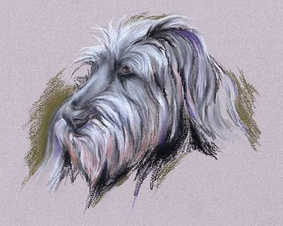 Pastel - Wolfhound Portrait by MM Anderson