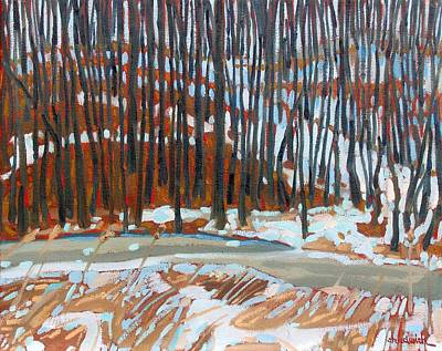 Swamp Oil Painting - Wolfson's Woods by Phil Chadwick