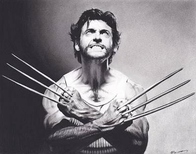 Wolverine Drawing - Wolverine by Brittni DeWeese