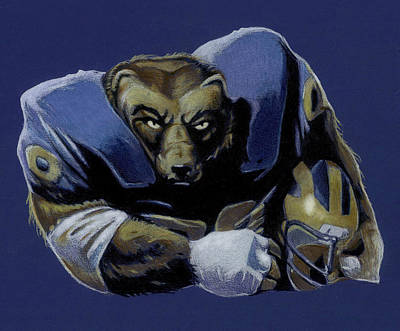 University Of Michigan Drawing - Wolverine by Jason VanderHoff