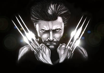Drawing - Wolverine by Kim Lagerhem