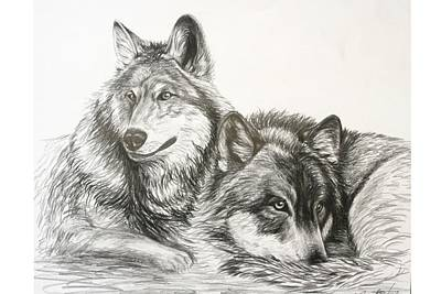 Buddy Drawing - Wolves At Rest by Sheri Marean