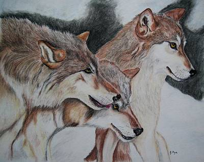 Drawing - Wolves by Joan Pye