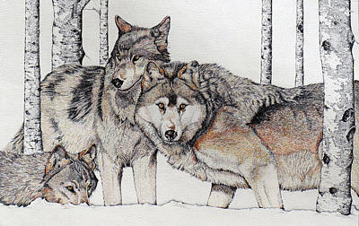 Wolves On Alert Art Print by Charles Berry