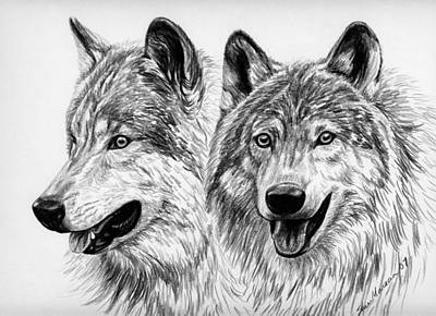 Buddy Drawing - Wolves  by Sheri Marean