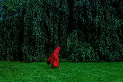 Photograph - Woman Dancing In Front Of Weeping Beech by Naila Ruechel
