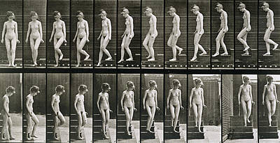 1887 Photograph - Woman Descending Steps by Eadweard Muybridge