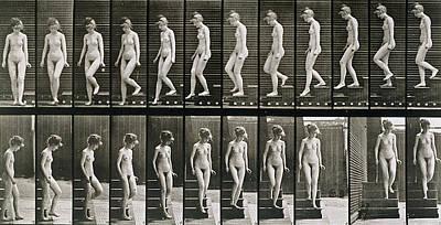 Eadwerd Photograph - Woman Descending Steps by Eadweard Muybridge