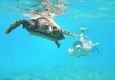 Photograph - Woman Diving With A Hawksbill Sea by 4fr