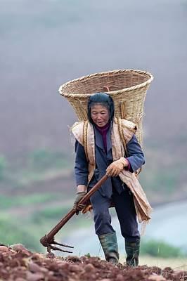 Woman Farm Worker Harvesting Potatoes Art Print