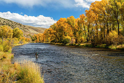 Colorado Fly Fishing River Wall Art - Photograph - Woman Fly-fishing In The Colorado River by Skibreck